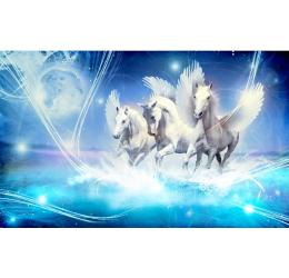 Konie 588