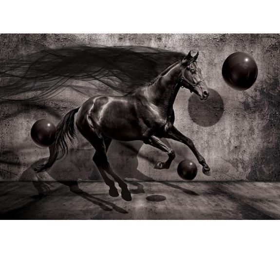 Koń 3138