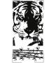 Tygrys NZ1