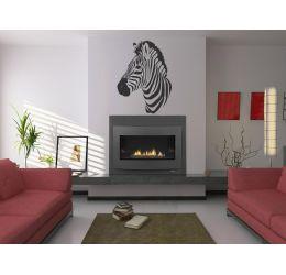 Zebra NZ30