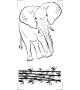 Słoń NZ50