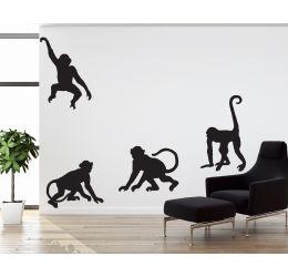 Małpki NZ67