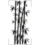 Orchidea NKW10