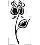Różyczki NKW29