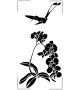 Kwiat NKW38